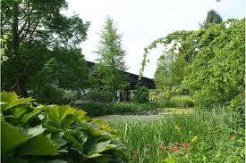 Botanic Gardens Dundee Beautiful Open Gardens To Visit In The Uk Gardens Rhs