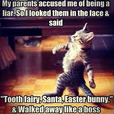 Liar Memes - my parents accused me of being a liar funny memes cat meme lol