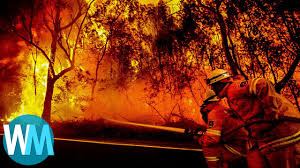 California Wildfire Ranking by Top 10 Most Devastating Fires In History Youtube