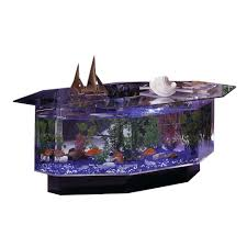 midwest home decor midwest tropical 680 stretched octagon aquarium coffee table