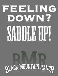 Save A Horse Ride A Cowboy Meme - horse quotes and cowgirl quotes with some cowboy quotes too