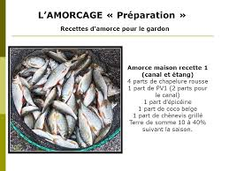 cuisiner le gardon a i e g gironde pêche compétions ppt télécharger