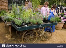 flower cart flowers in an arrangement planting plants on a flower cart