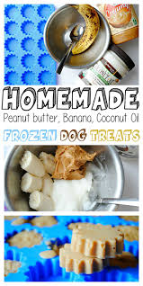 10 home made dog food ideas oil freeze frozen dog treats and
