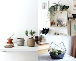 home decor india online decorations artificial plants for home decor online home