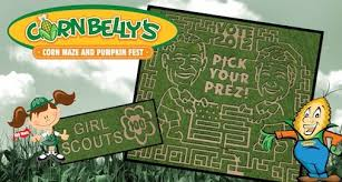 cornbelly s corn maze at thanksgiving point bored