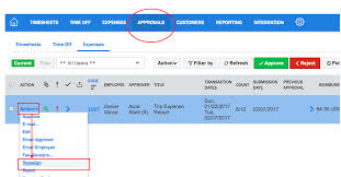 Trip Expense Report by Reassigning Expense Approvals U2013 Nexonia