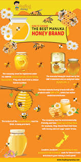 which brand is the best top 5 best manuka honey reviews for 2017 healing manuka