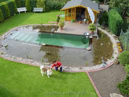 Backyard Swimming Ponds - swimming pond elpasonovicegardener
