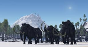 comeback woolly mammoth bringing extinct species
