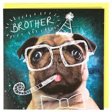 pug in glasses brother birthday card paperchase