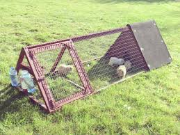 free diy rabbit hutch blueprints do it your self