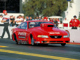 2001 Shelby Mustang Ford Mustang Cobra Racecar 2001 Pictures Information U0026 Specs