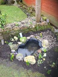 small wildlife pond gardening forum gardenersworld com