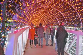 Sparkle Christmas Lights by Rhema Christmas Lights Ready To Sparkle Tulsaworld Com