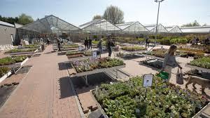 magasin deco belgique quatre ans après l u0027incendie tropiflora encore plus florissant