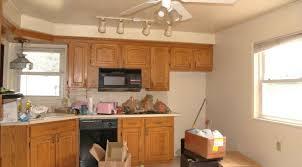 ceiling delightful home depot ceiling fan light fixtures