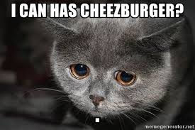 I Can Has Cheezburger Meme - i can has cheezburger sad cat meme generator