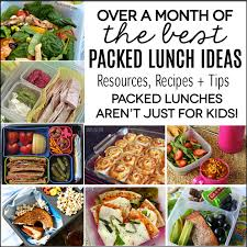packed lunch ideas not just for