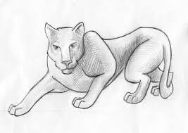 hunting panther sketch stock illustration image 51566716