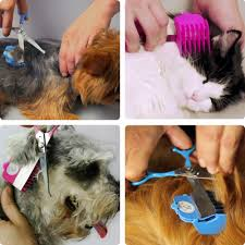 amazon com scaredy cut silent pet grooming kit for cats u0026 dogs