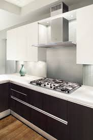 Two Color Kitchen Cabinets Two Tone Cabinet Finishes Double Kitchen Style