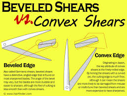 what is a convex hair cut the difference between convex edge shears and beveled edge shears