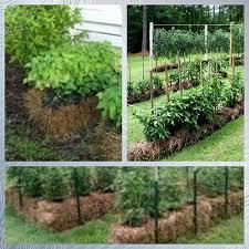 a landscaping u0026 design center growing a straw bale garden