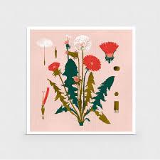 past florals by aaron rinas u2014 souvenir