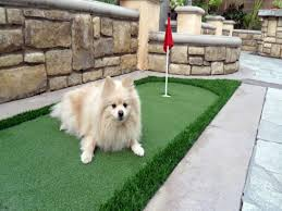 Backyard Putting Green Installation by Installing Artificial Grass Newman California Putting Green