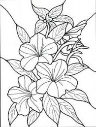 coloring pages stunning coloring flower pages perfect