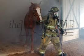 Barn Fires 14 More Considerations For Preventing Horse Barn Fires Horse