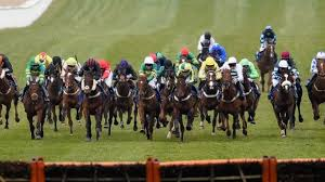 your top tips for st patrick u0027s day at cheltenham courtesy of