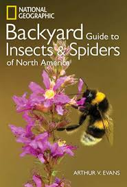 ng guide to the insects and spiders of north america book by