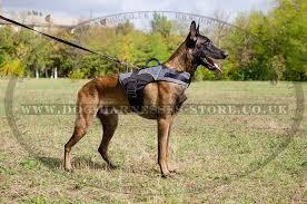 belgian shepherd uk dog harness vest for belgian shepherd warm nylon coat