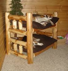 Bunk Bed For Dogs Bunk Bed Nancy Pinterest Bed Design Beds And