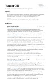 Business Manager Resume Sample by It Project Manager Resume Samples Visualcv Resume Samples Database