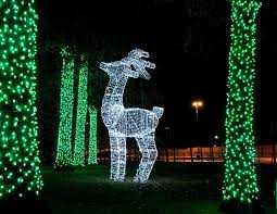 holiday lights tour detroit detroit zoo takes second place for best holiday lights in the us