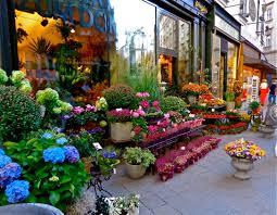 flower shop flower shop cookiecrumbstoliveby