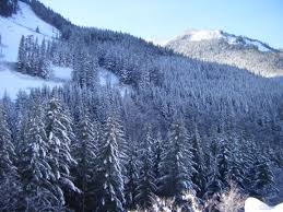 snow photos sought to illuminate snowmelt puzzle geospace agu