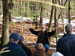 Massachusetts nature activities images Nature walks with mark fraser services JPG