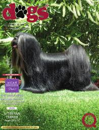 australian shepherd club qld dogs queensland the queensland dog world issue 3 march