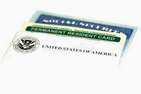 permanent resident and social security cards stock image image