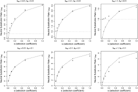 epistasis increases the rate of conditionally neutral substitution