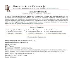 resume summary statements about experiences resume summary statement cliffordsphotography com