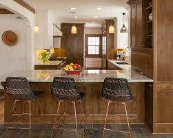 interior kitchen ideas best 100 craftsman kitchen ideas remodeling photos houzz