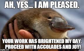 Platypus Meme - platypus imgflip