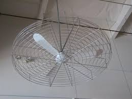 Design Ideas For Galvanized Ceiling Fan Best 25 Caged Ceiling Fan Ideas On Pinterest Industrial Looking