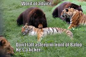 Advice Meme - advice meme funny pictures quotes memes funny images funny