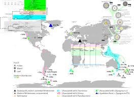 Pollen Map Publikationen